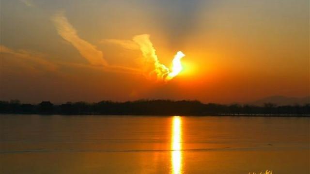 夕陽構成火鳳凰籠括